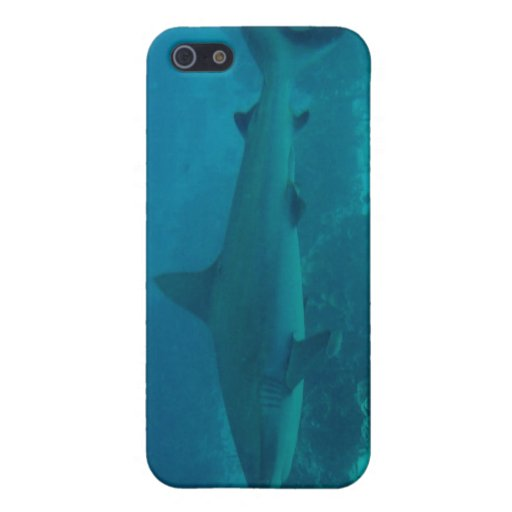 Grey Reef Shark Swimming iPhone 5 Cases