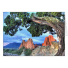 Grey Rock framed by Tree Card