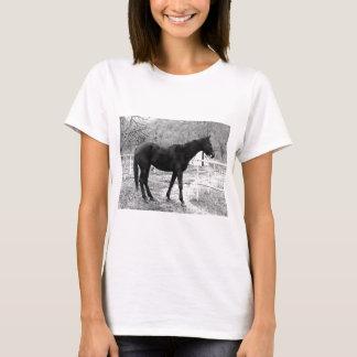 Grey Scale Pop Art Horse T-Shirt