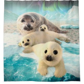 Grey Seals Shower Curtain