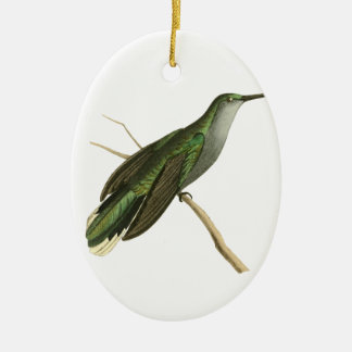 Grey Sickle-winged Humming Bird Illustration by Wi Ceramic Oval Decoration