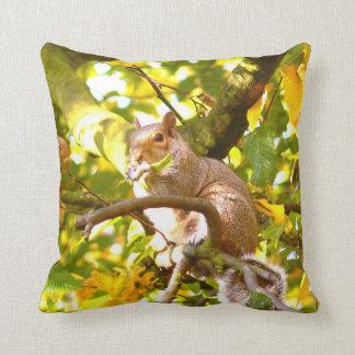 Grey Squirrel Cushion