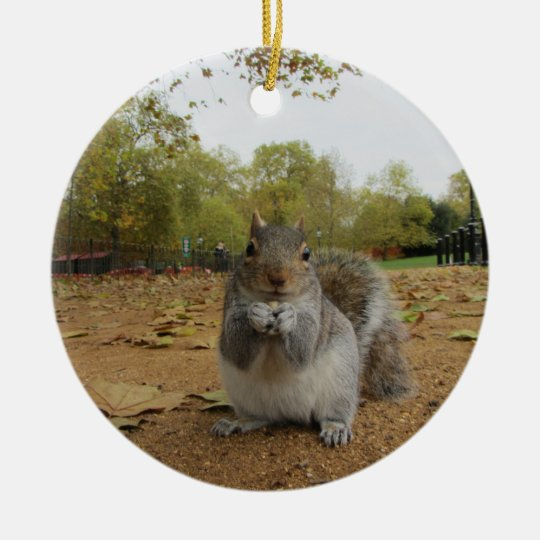 Grey Squirrel Hyde Park. Christmas Ornament