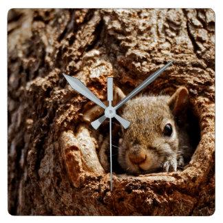 Grey Squirrel in a Hole Clock