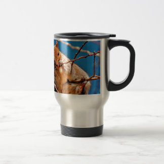 Grey squirrel in the tree travel mug