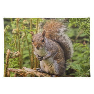 Grey Squirrel  Placemat