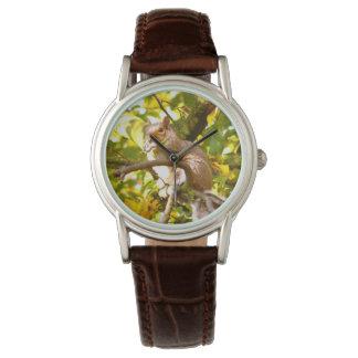 Grey Squirrel Wristwatches