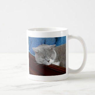 grey & white cat sleeping coffee mug