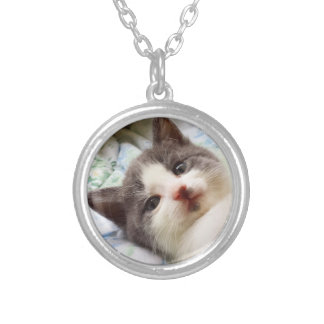 Grey & White Kitten Necklace