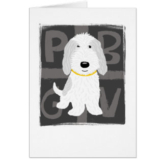 Grey & White PBGV Card