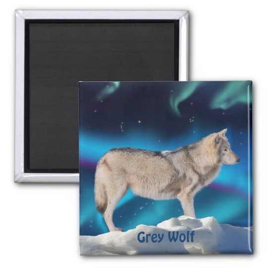 Grey Wolf & Aurora Wildlife Collection Square Magnet