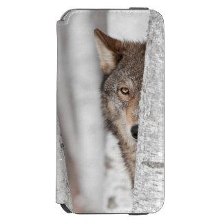 Grey Wolf (Canis lupus) Behind Tree Incipio Watson™ iPhone 6 Wallet Case