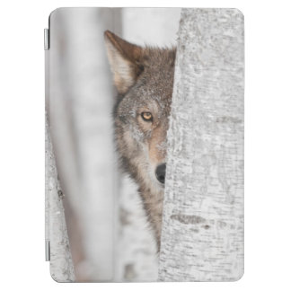 Grey Wolf (Canis lupus) Behind Tree iPad Air Cover