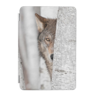 Grey Wolf (Canis lupus) Behind Tree iPad Mini Cover