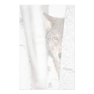 Grey Wolf (Canis lupus) Behind Tree Stationery