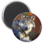 Grey Wolf, Endangered Species Digital Photography Fridge Magnet