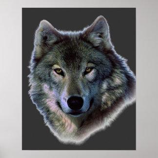 Grey Wolf Eyes Artwork Poster Print