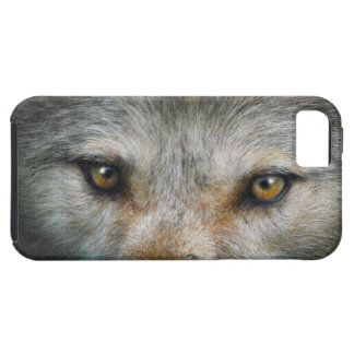 Grey Wolf Golden Eyes Wildlife Gift Tough iPhone 5 Case