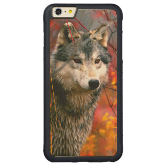 Grey Wolf in Beautiful Red and Yellow Foliage Carved Maple iPhone 6 Plus Bumper Case
