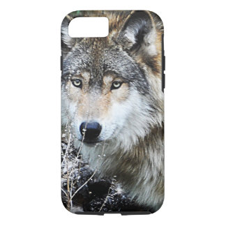 Grey Wolf iPhone 7 case