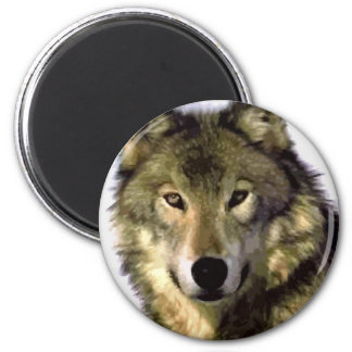 Grey Wolf Magnets