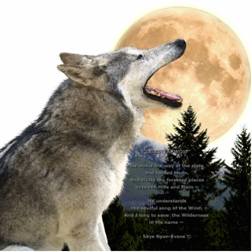 GREY WOLF & MOON (sculpted) Wildlife Magnet Cut Outs
