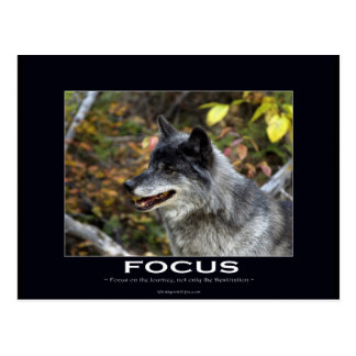 Grey Wolf Motivational Gifts Post Cards