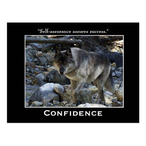 Grey Wolf Motivational Postcards