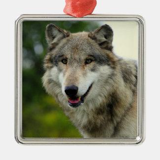 Grey Wolf Ornament