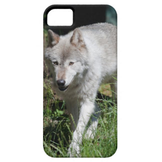 Grey Wolf phone case iPhone 5 Cases