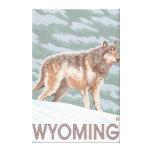 Grey Wolf StandingWyoming