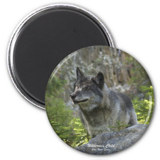 Grey Wolf Wildlife Photography Magnet