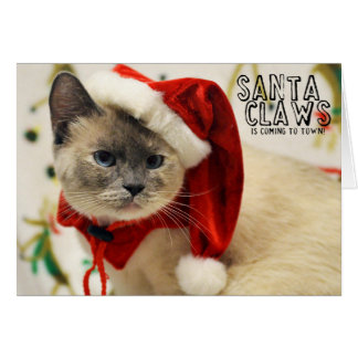 Greyfoot Cat Rescue Siamese Santa Card