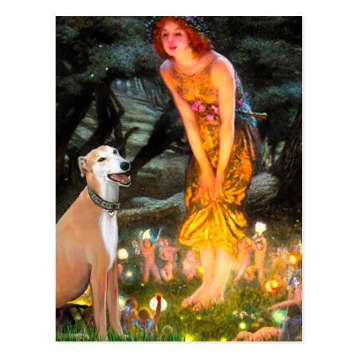 Greyhound 9B - MidEve Postcard