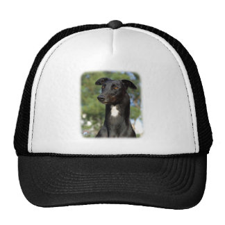 Greyhound 9R022-146 Hat