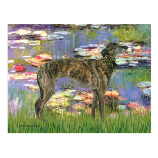 Greyhound (br8) - Lilies 2 Post Cards
