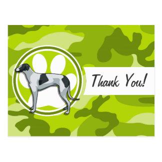 Greyhound; bright green camo, camouflage postcards