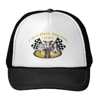 Greyhound Can t Have Just One lapdog Trucker Hat