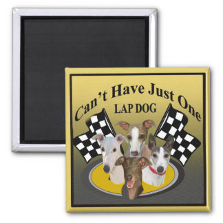 Greyhound Can't Have Just One lapdog Magnet