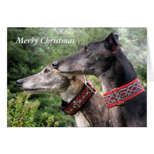 Greyhound Christmas card (p334)