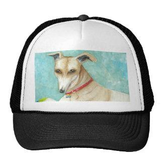 GreyHound Design Cap
