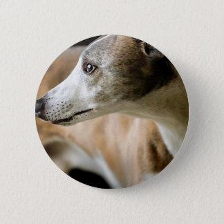 Greyhound Dog  Button
