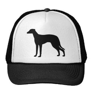 Greyhound Dog Cap