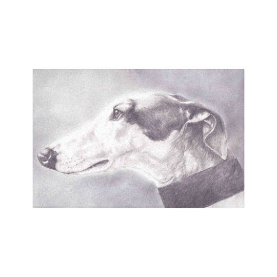 Greyhound Dog Profile Pencil Drawing Canvas Print