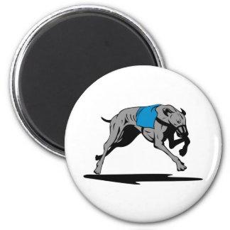 greyhound dog racing retro fridge magnets