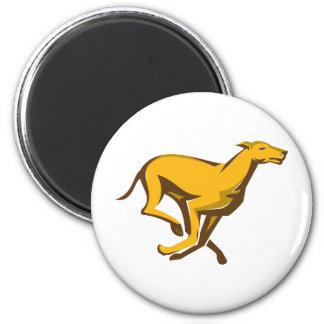 greyhound dog racing running side fridge magnets
