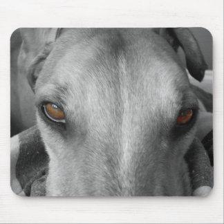 Greyhound Eyes Mouse Mat