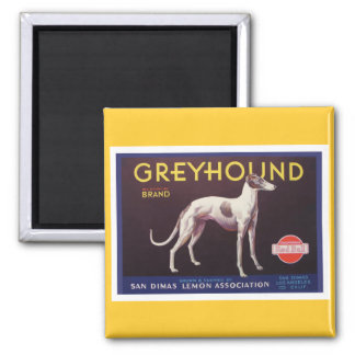 Greyhound Fruit Crate Label Square Magnet