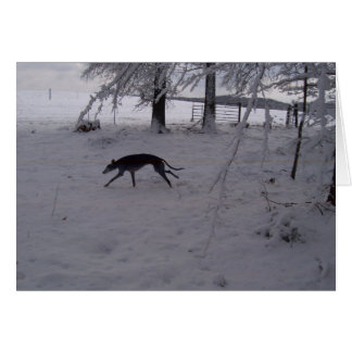 greyhound in the snow greeting cards