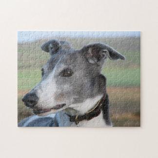 Greyhound jigsaw puzzle (p347)